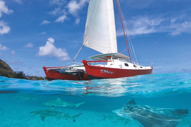 Half Day Tour : Moorea Snorkeling & Sailing on a Catamaran named Taboo