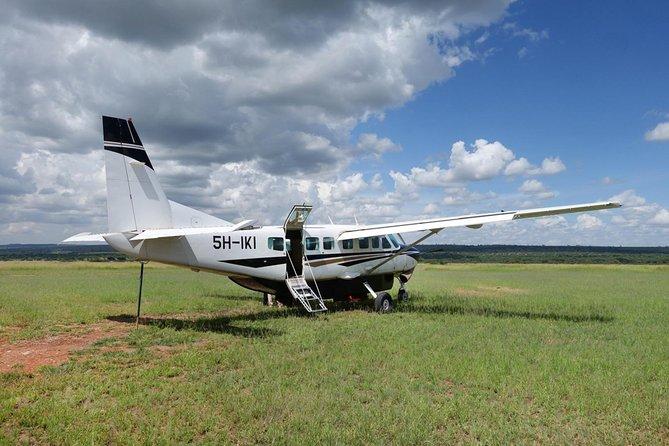 Mikumi National Park From Zanzibar Flying Option Day Trip