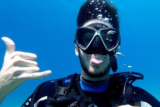 Try scuba dive (from Beach) photo 7