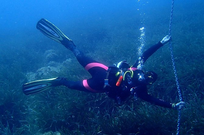 Try scuba dive (from Boat) photo 15
