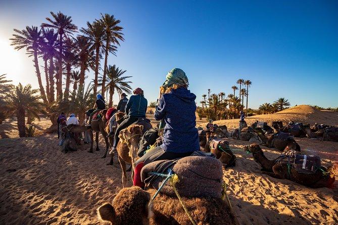 Desert, Fez and Marrakech from Tangier
