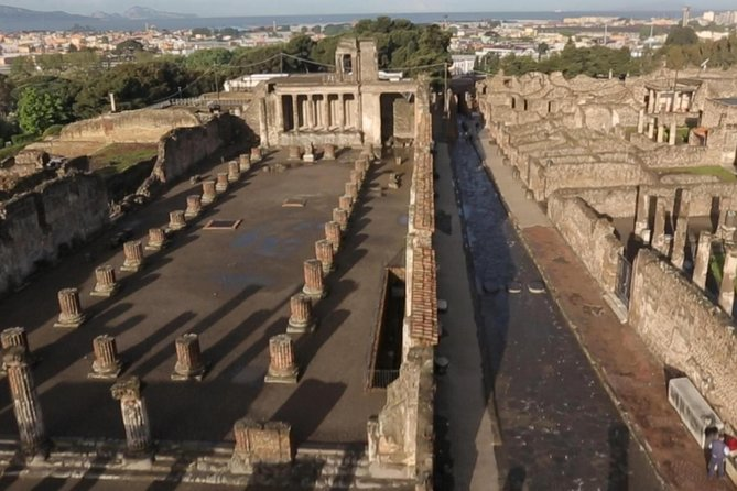 Pompeii and Herculaneum Skip-The-Line with Lunch&WineTasting from Naples Port