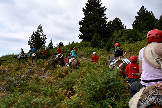 Albania Horse Riding, Off Road in the Holly Mount of Tomor Berat Tours (ARG)