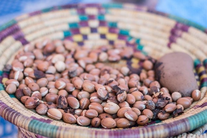 Visit the famous Argan Oil Factory in Agadir and learn About its Culture
