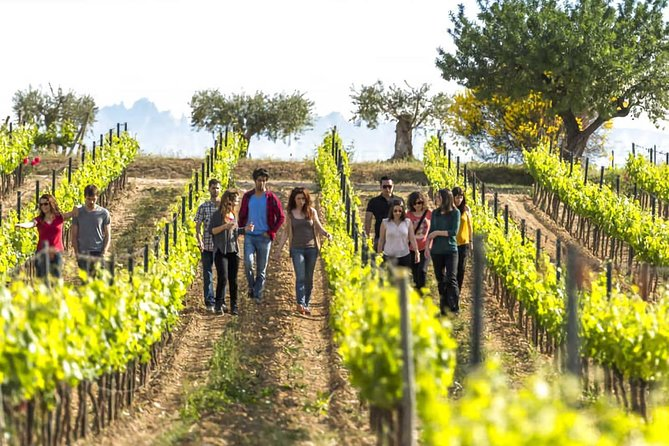 Penedès: Hiking and Wine