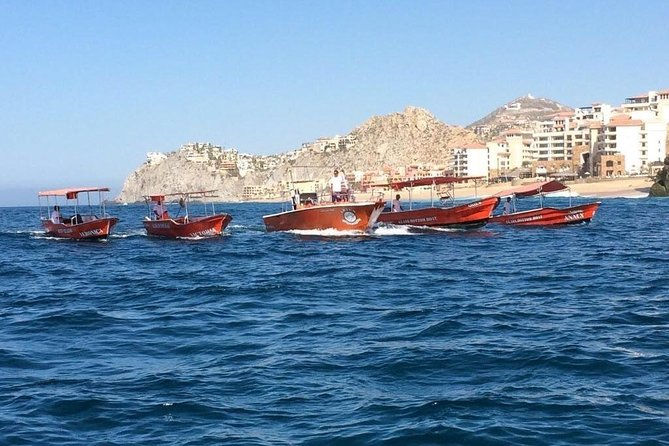 Glass Bottom Boat Tour - Cabo San Lucas