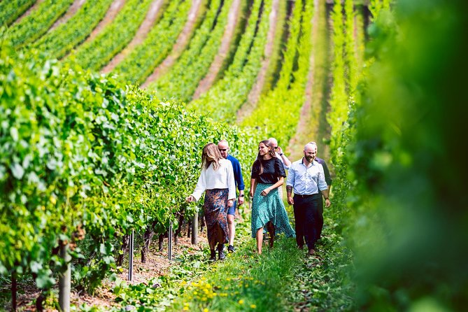 Tasmanian Wine Tour