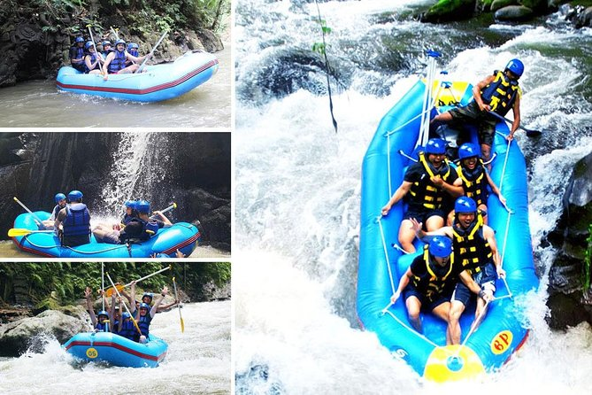 Half-Day Rafting Adventure in Ayung River