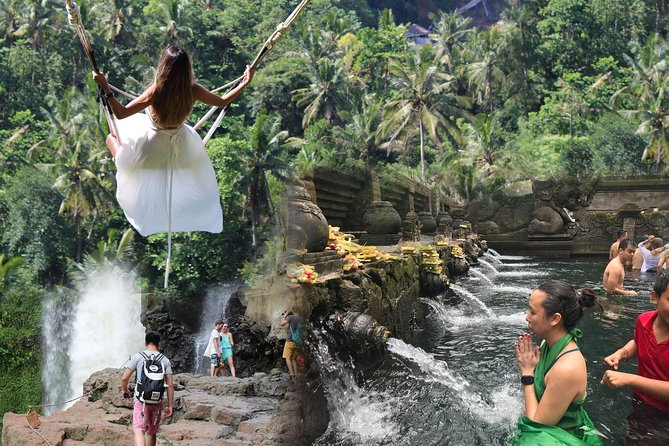 Bali:Best of Ubud with jungle swing - Rice Terrace - Spring Temple and Waterfall