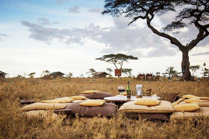 5 Days Lake Manyara - Serengeti & Ngorongoro Crater Safari