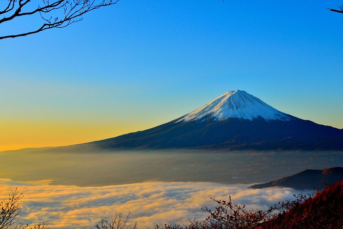 1 Day Private Tour Mt. Fuji, Hakone and Lake Ashi with English speaking driver.
