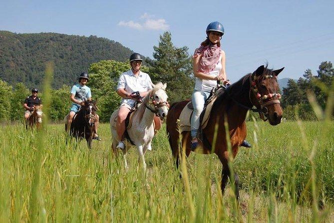 Kusadasi Adventure Horse Safari