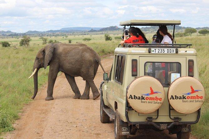 5 Days 4 Nights-Serengeti safari