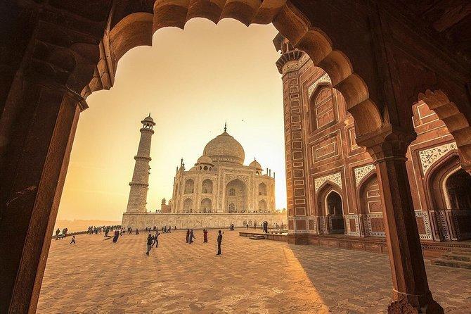Skip The Line:Taj Mahal & Keoladeo Bird's National Park Tour From Jaipur By Car