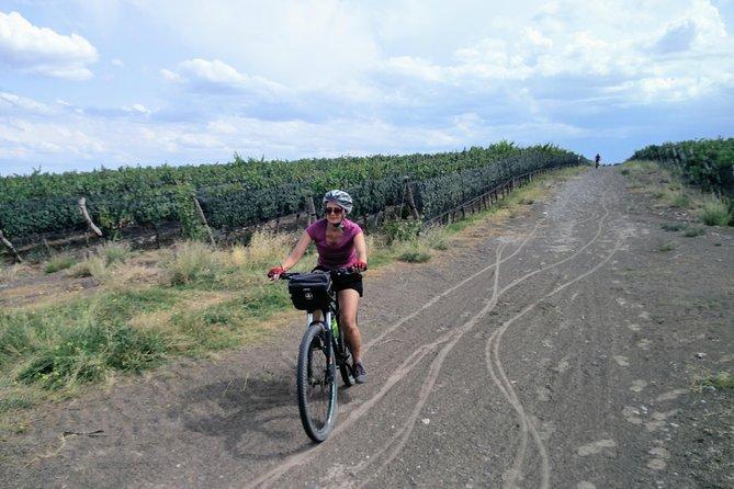 Valle de Uco en Bicicleta, Mendoza, ARGENTINA