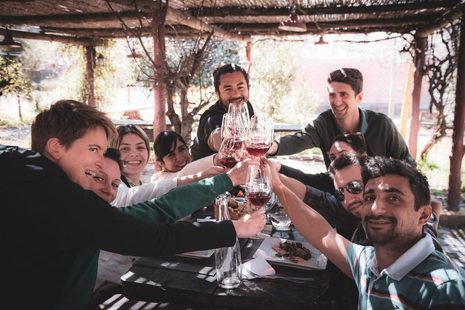MustDo wine tour in Mendoza with gourmet picnic