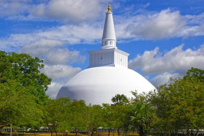 Private Day Tour to Aukana & Anuradhapura Ancient City From Colombo. photo 6