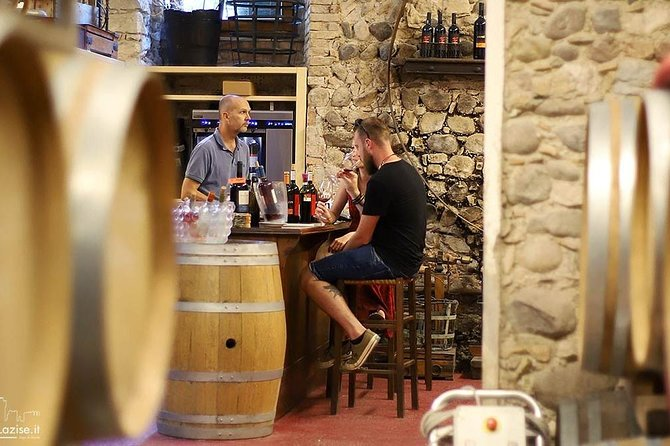 Wine Tasting in Historical Center of Lazise