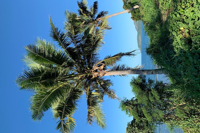 Escape Experience Enjoy Fiji