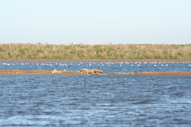 Saadani National park day trip from Dar es salaam