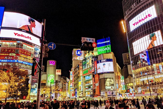 Tokyo City Tour: Private Chauffeur Guide with Chartered Car