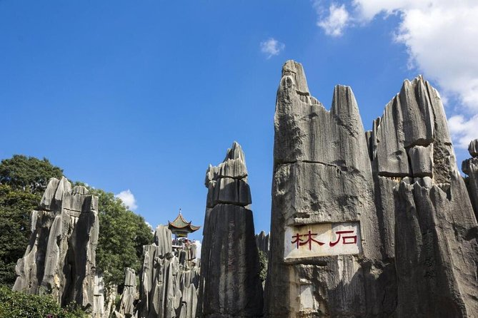 1-Day Self-Guided Stone Forest Geological Park Tour from Kunming