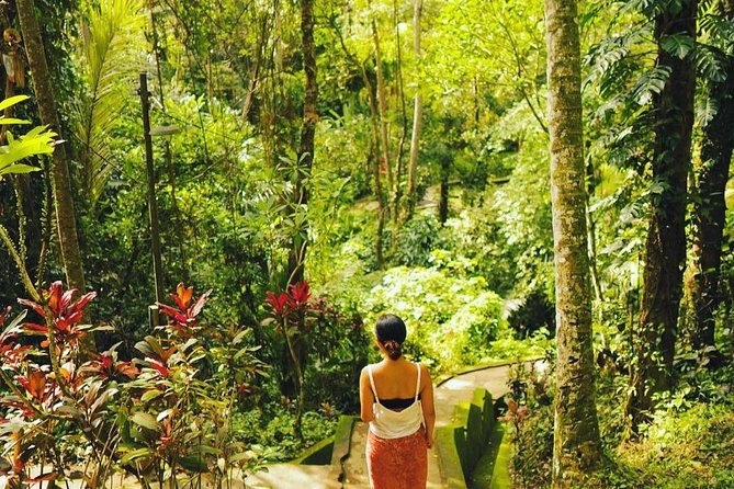 Bali Sightseeing, Temple, Monkey Forest and Waterfall Full Day Tour