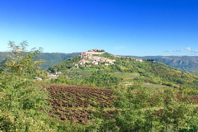 Istrian hill top cities tour with truffle and olive oil tasting photo 4