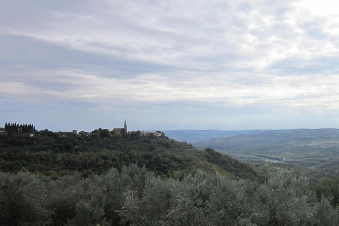 Istrian hill top cities tour with truffle and olive oil tasting photo 6
