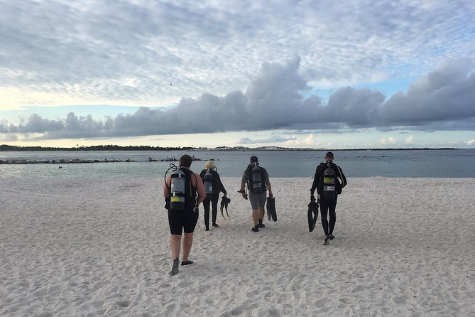 Small Group Guided Shore Dives in St. Andrews State Park, Florida