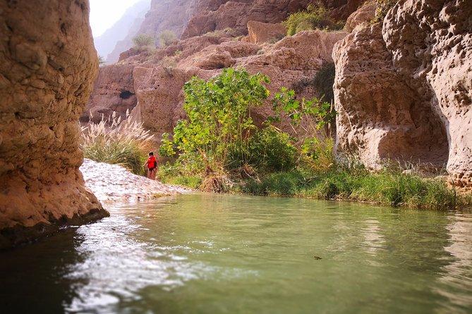 Wadi Shab Adventure