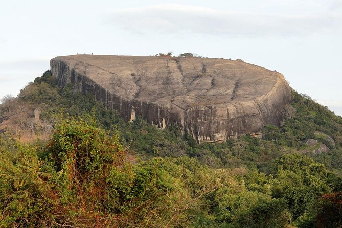 Private Day Tour to Pidurangala Rock From Colombo.