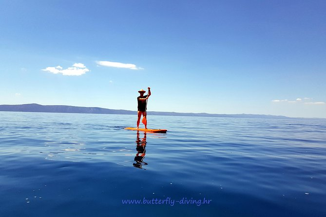 Stand up paddling board for 2 hours rental