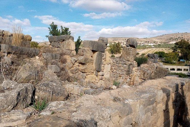 Day trip Volubilis Moulay Idriss Meknes