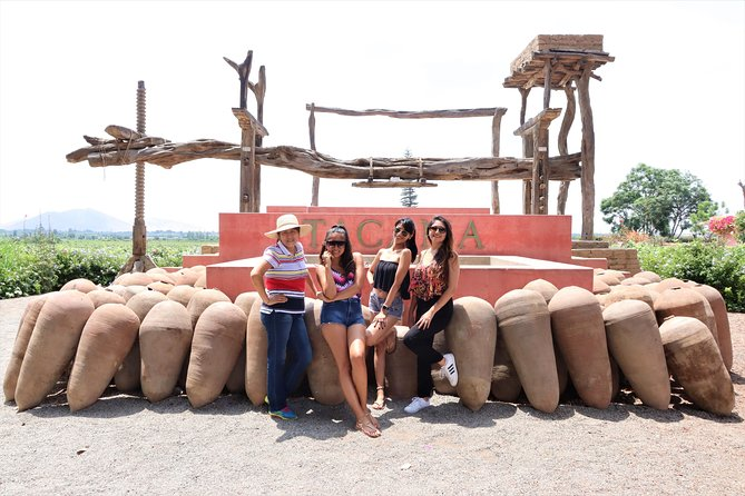 3-hour Wine and Pisco tour / Tacama and El Catador