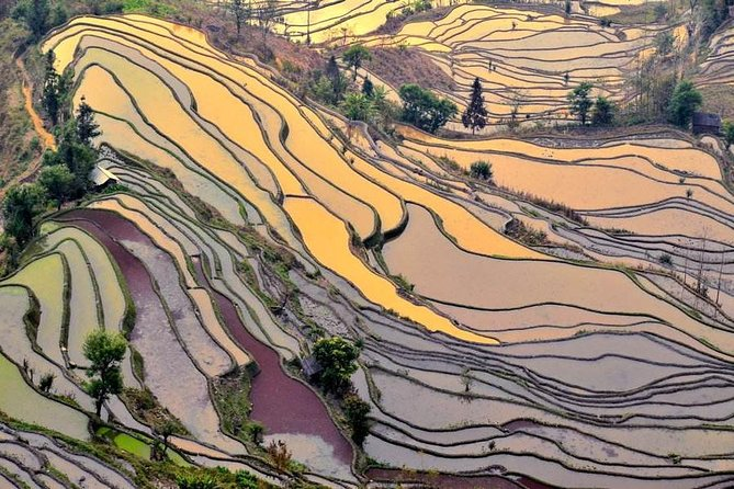 7-Days tour from Kunming to Lijiang and overnight in Yuanyang Rice Terraces