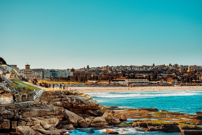 Bondi to Coogee Guided Walk photo 8