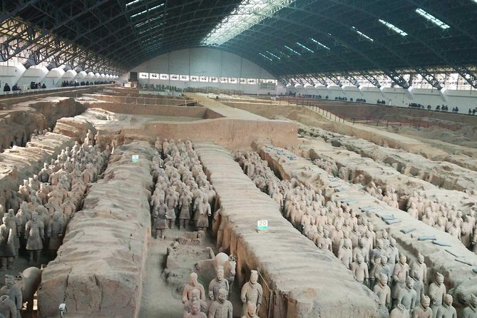 Xian Group Tour of Qin Terracotta Warriors and Horses Museum photo 8