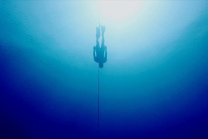 Try Freediving in Pemuteran, Aida 1 with theory, pool and ocean session 1 day