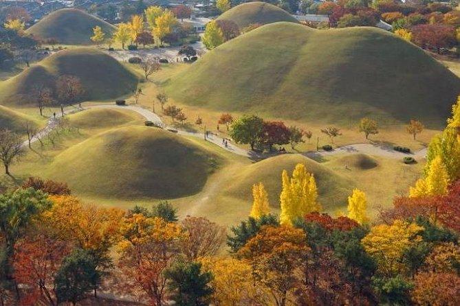 2D1N Private Tour 1000 year's Silla Dynasty & Capital City at Gyeongju Area