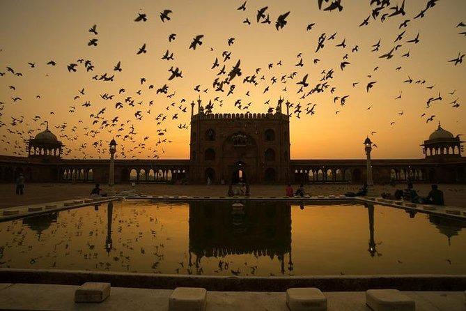 Private AC Car Transfer- Agra Hotel to Delhi Airport