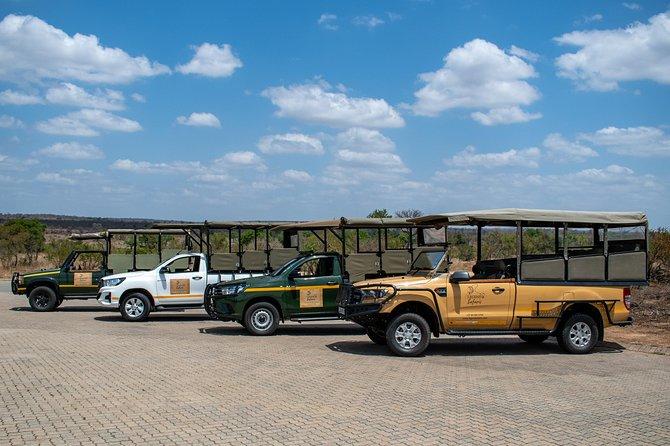 Kruger Safari - Morning Half Day