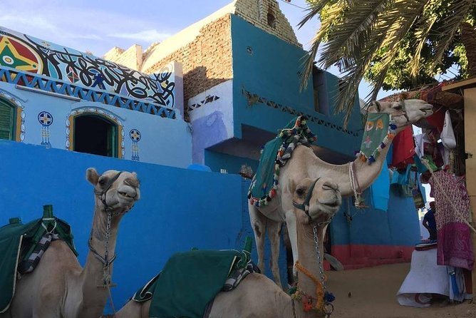 Nubian Village and Camel Ride