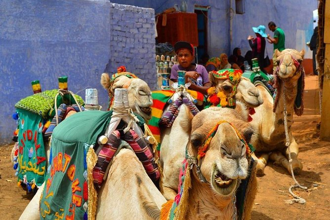 Nubian village and Camel ride photo 3