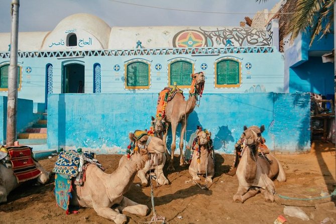 Nubian village and Camel ride photo 17