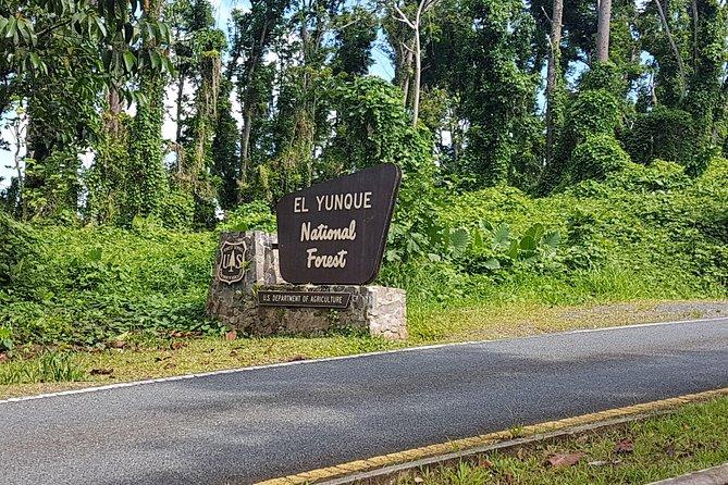At El Yunque National Park