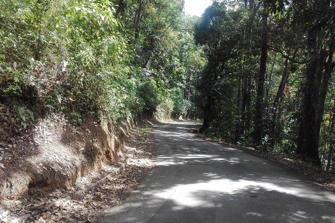 Biking in the Mountain of Trinidad