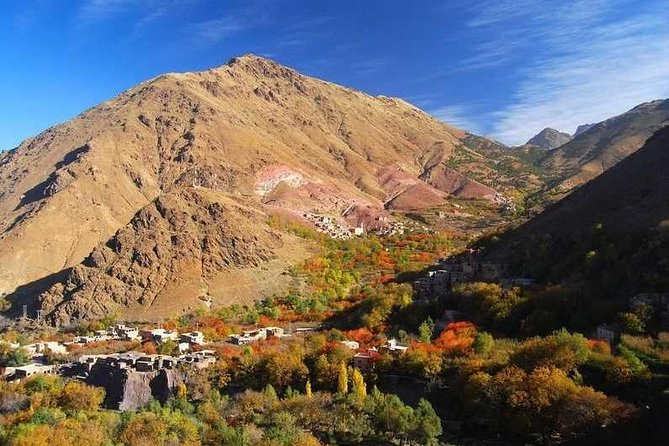 1 Day Excursion Learn Berber Cooking Class in High Atlas Mountains