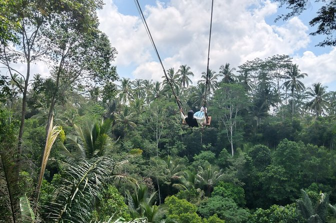 "Bali Ubud Swing ,Bird Nest and Waterfall""instagram Tour"""