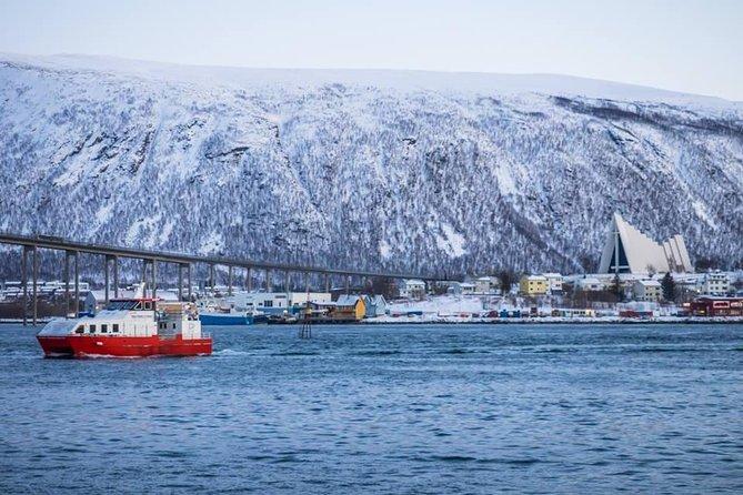 Tromsø Day Cruise